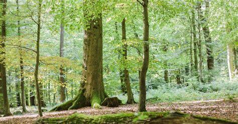 onlineshop friedwald weilrod