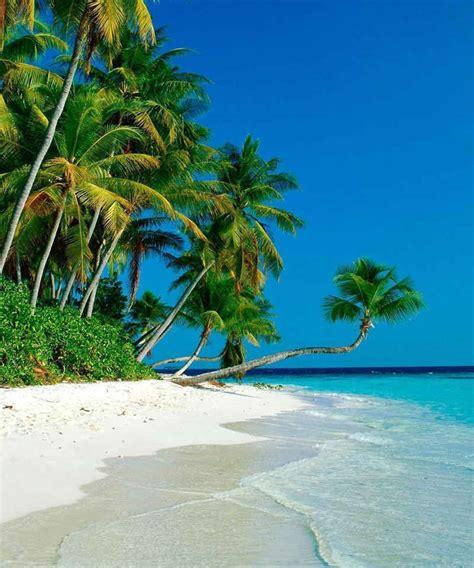 paket wisata murah trivefun   travel