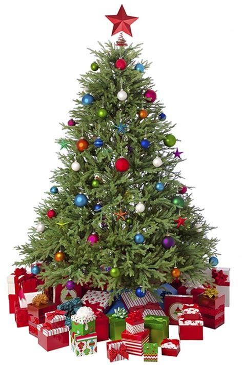 choosing an artificial christmas tree gardensite co uk
