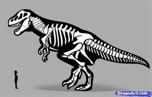 How to Draw Dinosaur Skeleton