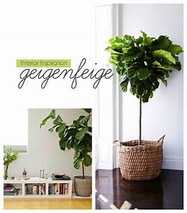 Zimmerpflanzen Für Kinderzimmer : 7 weitere genial einfache ikea hacks glas ikea pflanzen ikea und wohnzimmerpflanzen ~ Orissabook.com Haus und Dekorationen