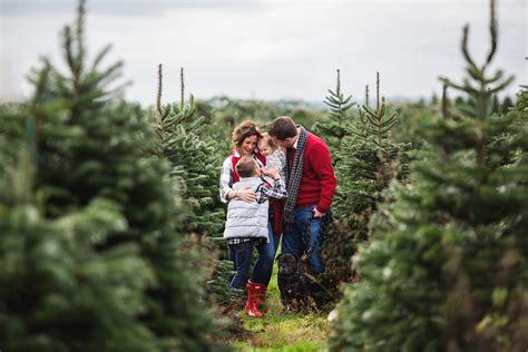 christmas tree farm family photos seattle family