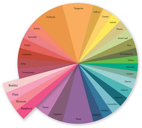 the color wheel color wheel make it from your