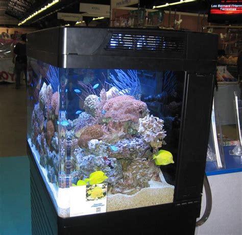 aquarium sea 130 28 images sea max 130 up of live rock aquarium sea up and for sale sea max
