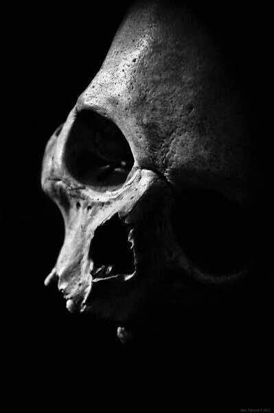 Best Evilness With Head Shot Skull Images