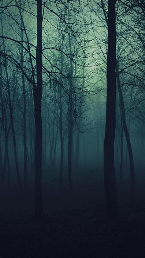 Creepy Wallpaper Iphone by Forest The Iphone Wallpapers