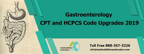 Gastroenterology Cpt And Hcpcs Code Upgrades 2019latest