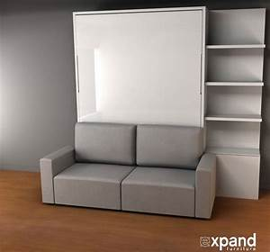 Murphy bed and sofa combo hydatidcystinfo for Sofa and bed combo