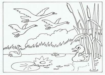 Coloring Ugly Duckling Story Crafts Nursery Princess