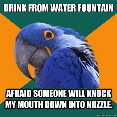 Mouth Watering Meme - drink from water fountain afraid someone will knock my mouth down into nozzle paranoid parrot