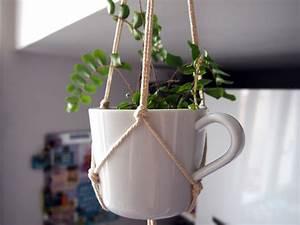 Plantes à Suspendre : comment faire une plante suspendue les projets ~ Premium-room.com Idées de Décoration