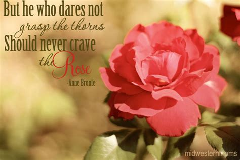 flowers quotes images  quotes page