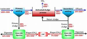 Cod Mass Flow Through A Conventional Domestic Wastewater