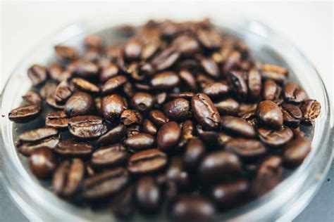 When the coffee beans are heated, as in the roasting process, these oils turn from solid to liquid and rise to the surface of the bean. Do Not Try Another Oily Coffee Beans Until You Read This Guide | Crazy Coffee Crave