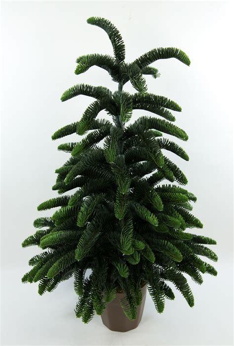 Weihnachtsbaum Aus Tannenzweigen by Tannenbaum Nobilis 80cm Im Topf Yw K 252 Nstlicher