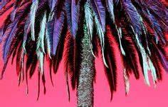 Palm Tree Art on Pinterest