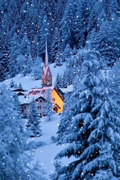 Winter Landscape Animated Scenes Snow Fall Forest