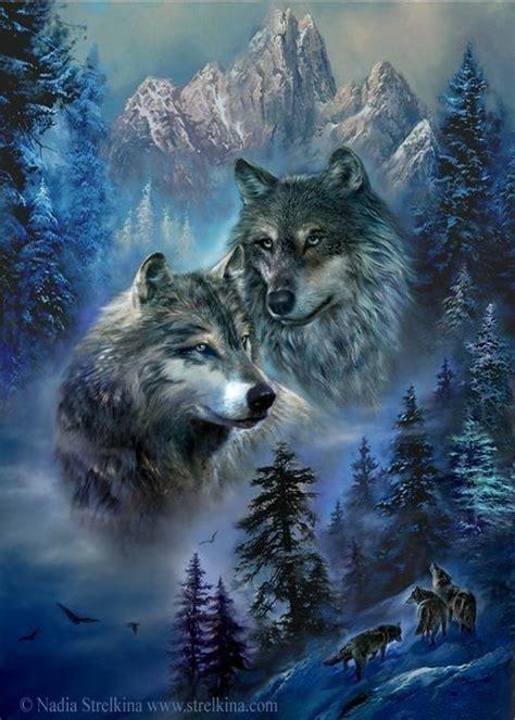 schoenes bild wolf hintergrundbild wolf bilder und wolf