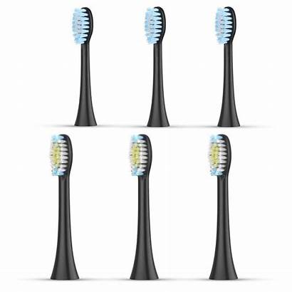 Electric Toothbrush Liberex Replacement Heads Ms300 Sonic