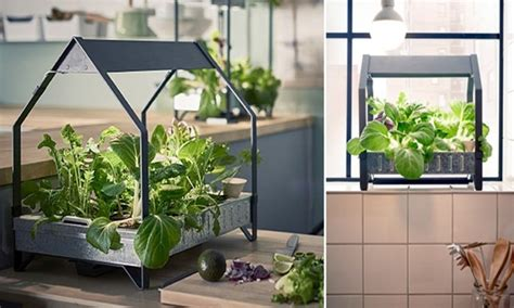 cool stuff ikea s indoor gardening collection