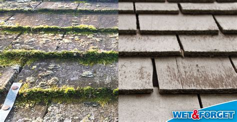 Ask Wet & Forget A Clean Sidewalk Is A Snap With Wet How To Repair A Leak In My Roof Average Lifespan Of Concrete Tile Gb Garden Restaurant Bars Miami Galvalume Roofing Philippines Patio Designs Australia Metal Supplies Oklahoma City Snow Removal Bend Or
