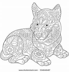 husky coloring pages - coloring page dachshund puppy dog symbol stock vector
