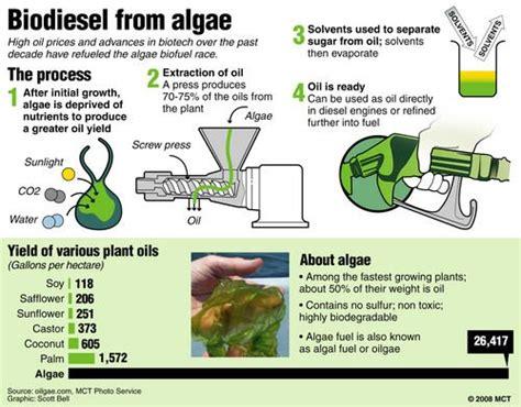 17 Best Ideas About Biomass Energy On Pinterest