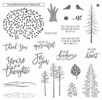 Stampin Hydrangea Card Branches Thoughtful Australia