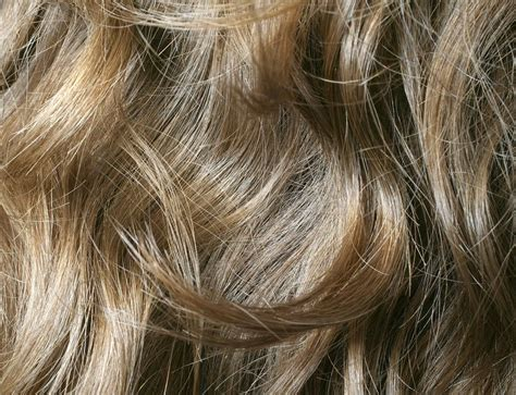 hair texture porosity  elasticity