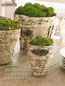 Birch, Crafts, For, Home, Decor, 15, Ideas