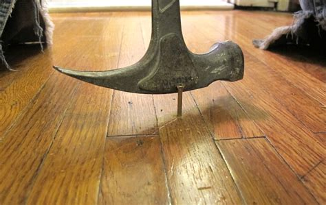 stop squeaky floors screws breakaway whozwho live