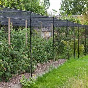 Walk in fruit cage by agriframes steel custom sizes for Garden cage