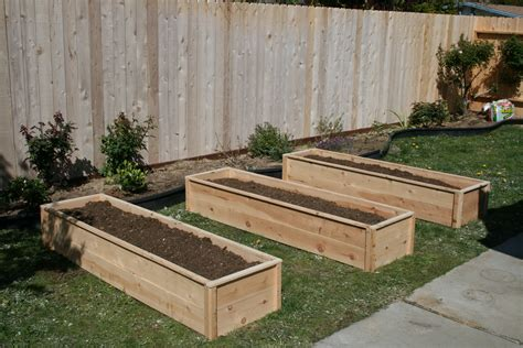 Raised Garden Bed by White Raised Cedar Garden Beds Diy Projects