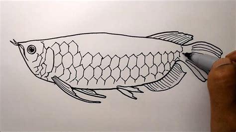 contoh gambar cara mewarnai ikan arwana
