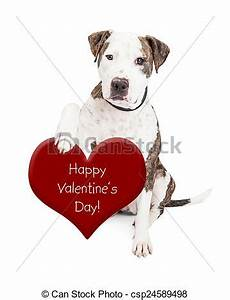 Pit bull dog valentines day heart. Cute and friendly pit ...