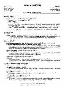Attractive examples of resumes for college graduates for How to make a good college resume