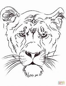 Adult Coloring Pages Lion Head - Coloring Page Of Lion Head