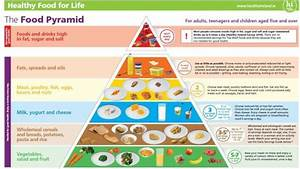 Pyramid Or Plate  Carbs Or Veggies  What Really Is The