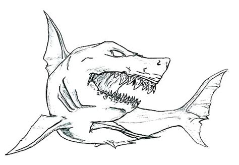 Megalodon Shark Coloring Pages Natashamillerweb