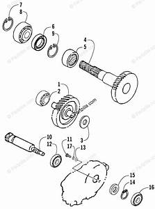 Arctic Cat 2002 90 Cc Wiring Diagram : arctic cat atv 2002 oem parts diagram for transmission ~ A.2002-acura-tl-radio.info Haus und Dekorationen