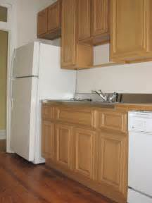 Kitchens with Honey Maple Cabinets