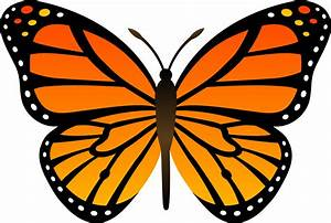 Butterfly Clip Art - Clipart Bay
