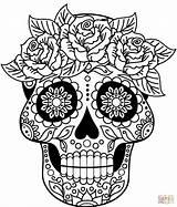 Coloring Skull Sugar Printable Drawing Supercoloring Colorings sketch template