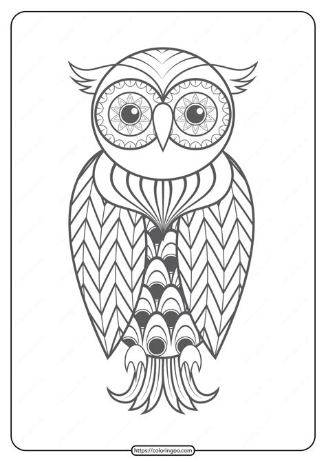 printable owl  animals coloring pages