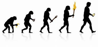 Digital Brand Identity Evolution Strategy Web Lumos