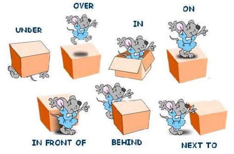 Learning About Prepositions, Position And Location Vocabulary English Lesson  English For Kids