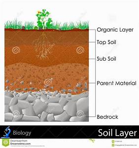 Team Tipuranga  Soil Layers