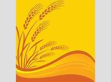 Wheat free vector download 324 Free vector for