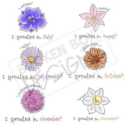 july flower   month sprouted birthday month set
