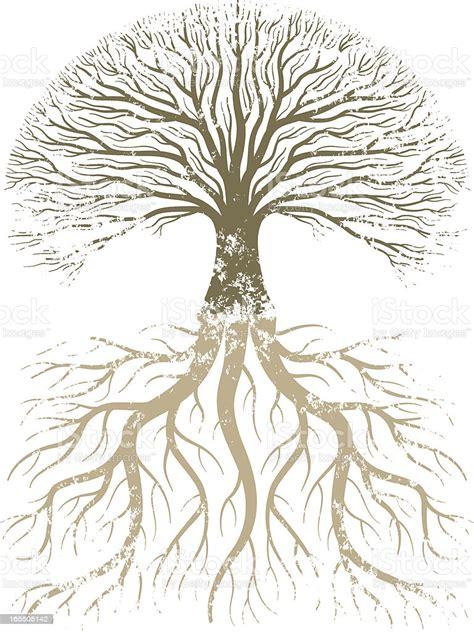 grunge tree  roots stock illustration  image